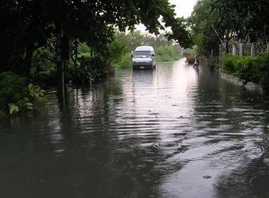 Сезон дождей