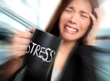 Законы стрессоустойчивости