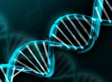 Nations Away from Africa Accumulated More Harmful Gene Mutations — Research