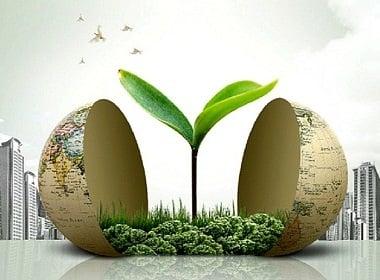Сценарий будущего планеты или как человек влияет на биосферу Земли