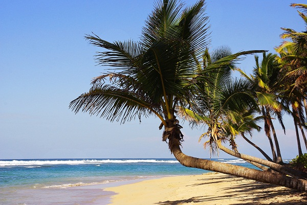 Why Russians travel to the Dominican Republic