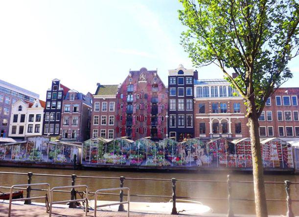 Жизнь в Голландии: Постоянное развитие