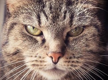 10 глупых привычек, которые раздражают окружающих
