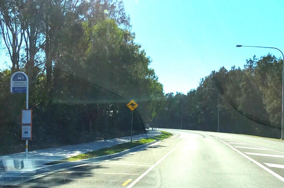 знак с кенгуру на дороге.