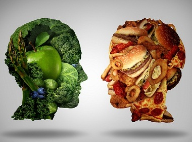 Scientists confirm: We are what we eat